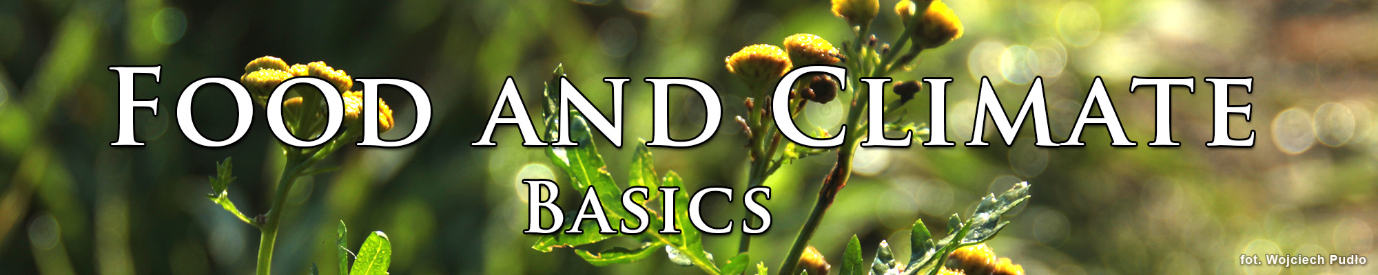 Topic: Food and Climate. Basics.