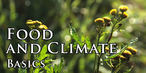 Food and Climate. Basics.