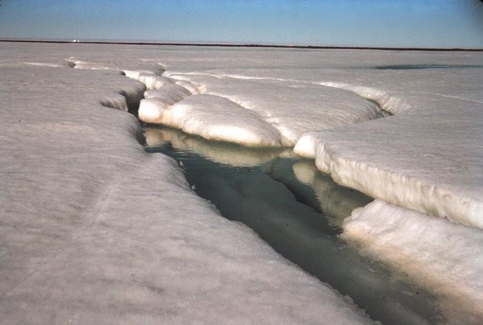 odwilż wczesną wiosną na Arktyce